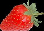 tubes fruit
