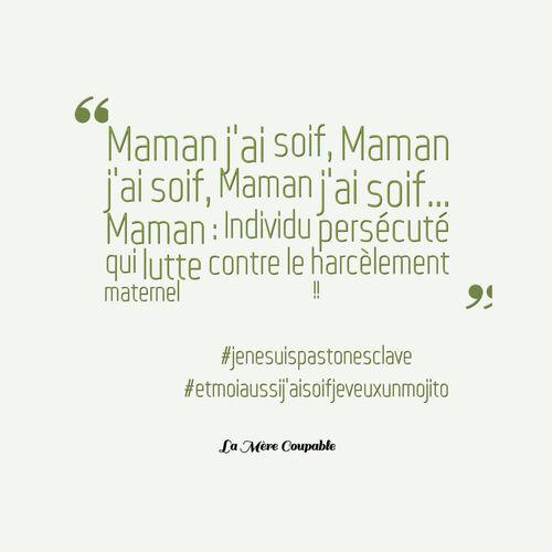 Les 20 citations extraites du Livre de #LaMèreCoupable