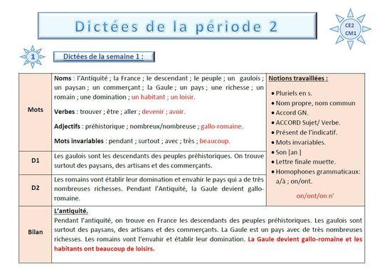 """Dictées flash programmation Picot """"grammaire au jour le jour"""" pour CE2-CM1"""