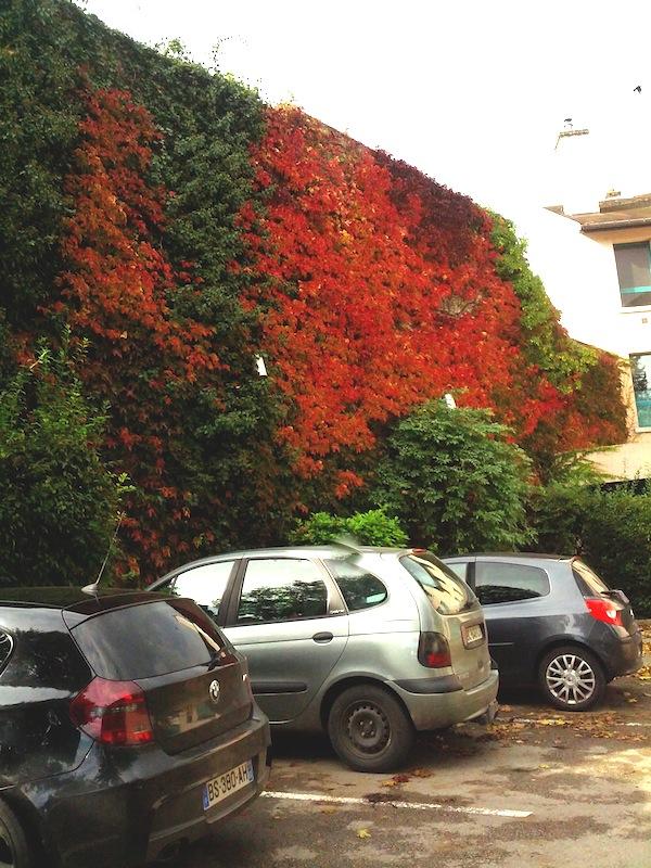 la maison parée rouge éclatant
