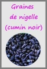 Graines-de-Nigelle-54-2-big-1-www-bienetreetgourmandises-com