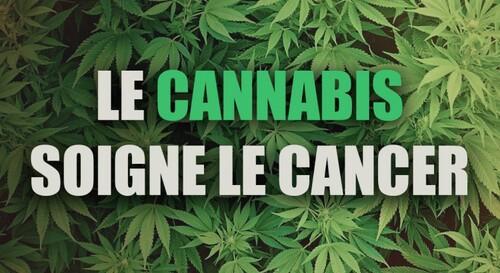 Cap Santé - parlons des vertus du CBD(Cannabidiol)