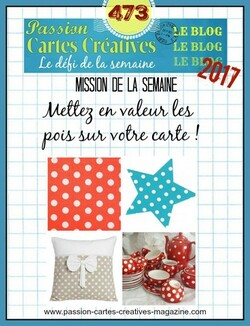 Passion Cartes Créatives#473 !