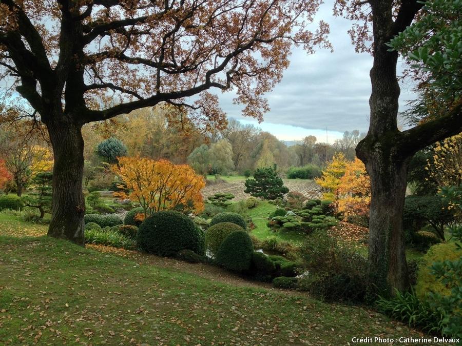Jardin Borja, la nature environnante