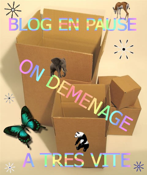 Blog-en-pause-On-demenage-A-Tres-vite-kdrr32i0.jpg
