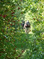 La randonnée du 25 septembre à Versainville