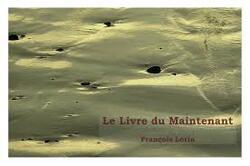 Le livre du maintenant de François Lorin