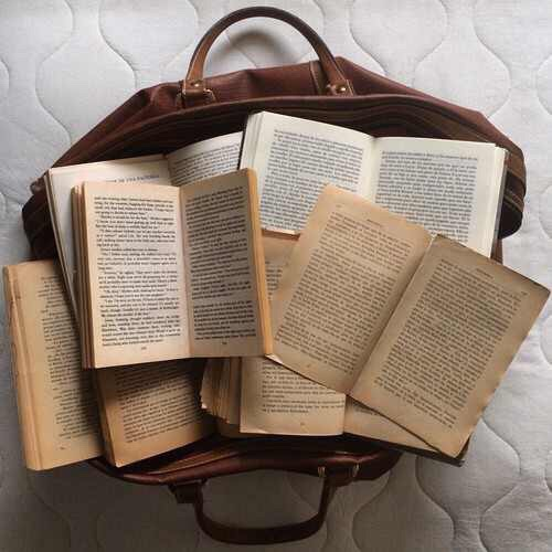 Image de book, brown, and bag