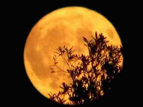 La Lune; Mystères et Sortilèges