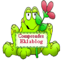 BLOGS ASTUCES