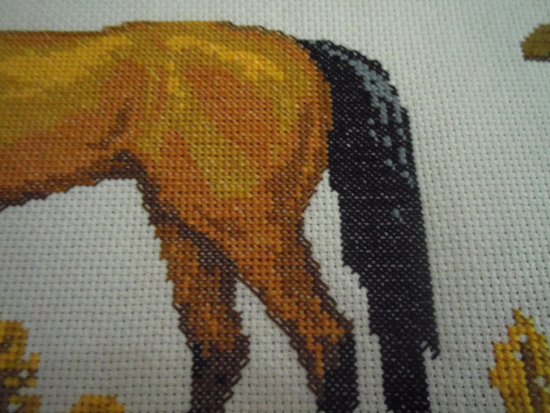 eliane cheval 3