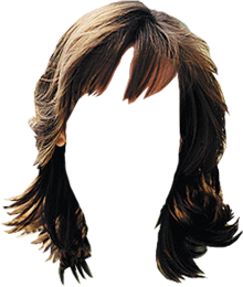 TUBES CHEVEUX PNG