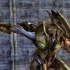 Halo_Combat_1