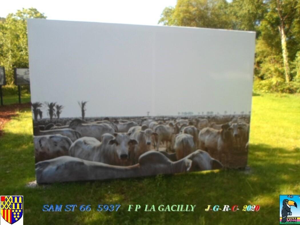 FESTIVAL PHOTO N° 17 LA GACILLY 56  -1/2-   D   21/07/2020