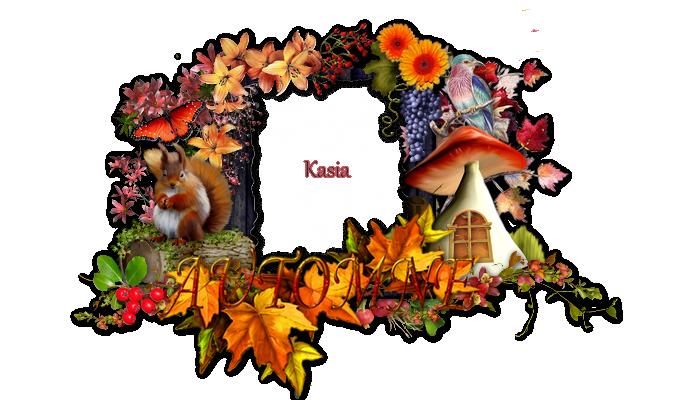 Cluster, Frame automne