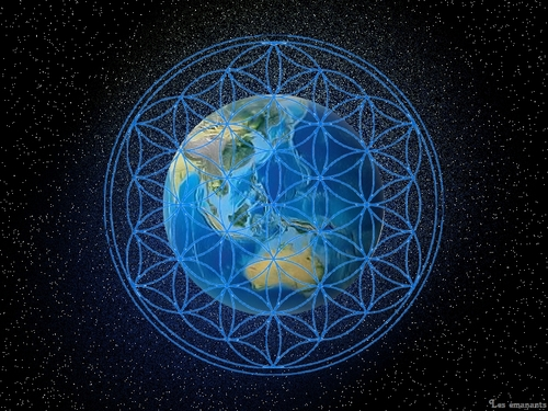 Les réseaux vitaux de la terre