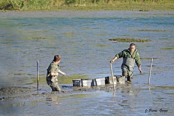 La vidange du lac de Marcenay, un reportage de Jean-Pierre Gurga (première partie)