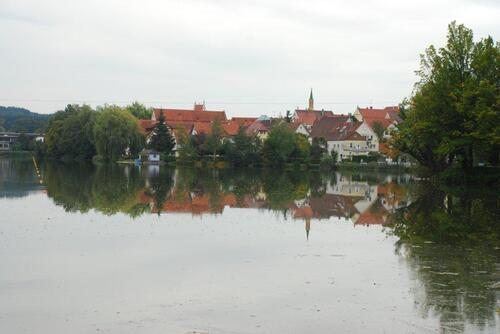 Bad walsee