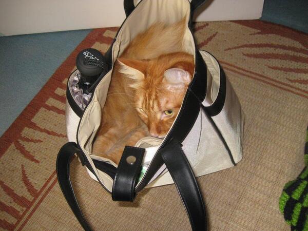 Le sac de ........