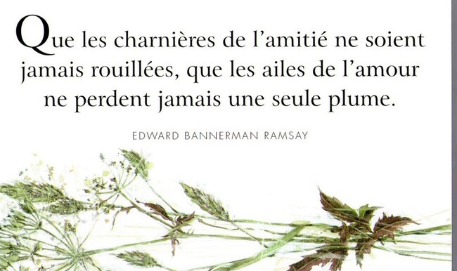 Citations sur l'amitié (22)