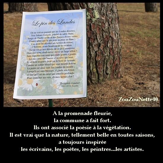 PROMENADE-FLEURIE-LE-PIN-DES-LANDES-THEOPHILE-GAUTHIER.jpg