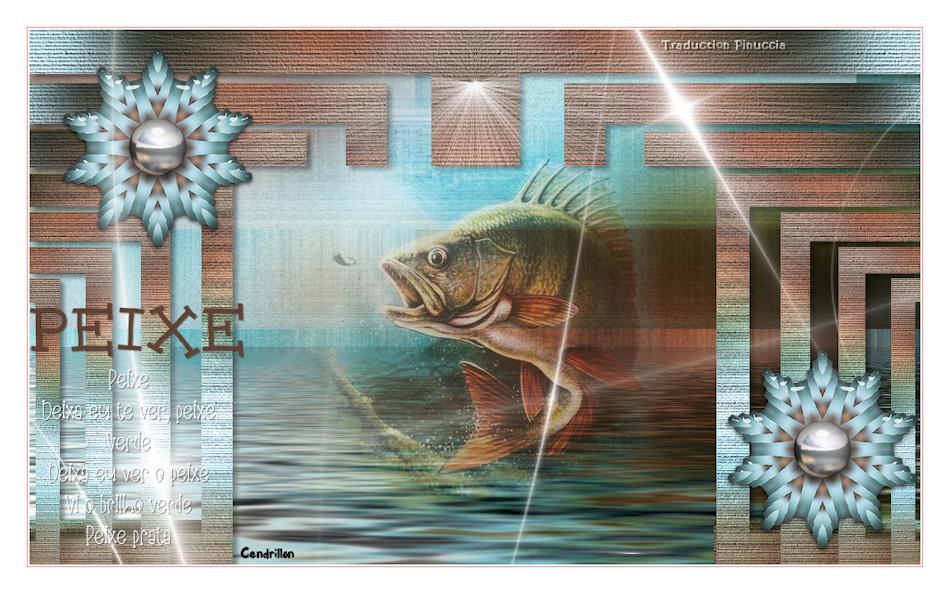 Peixe- Estela - Traduction Maidiregrafica