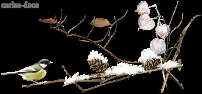 design hiver