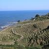 rizière péninsule de Not