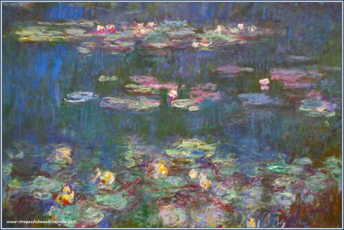 Les nymphéas : Claude Monet