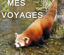 Mes Voyages