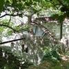 ANDROS : Stenies moulin à eau