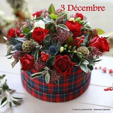 le trois déembre un jour particulier