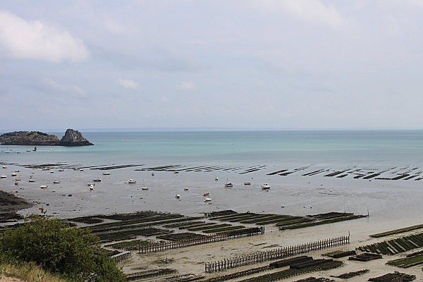 cancale10