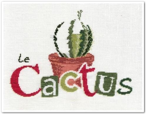 Le Cactus de Lilipoints 2