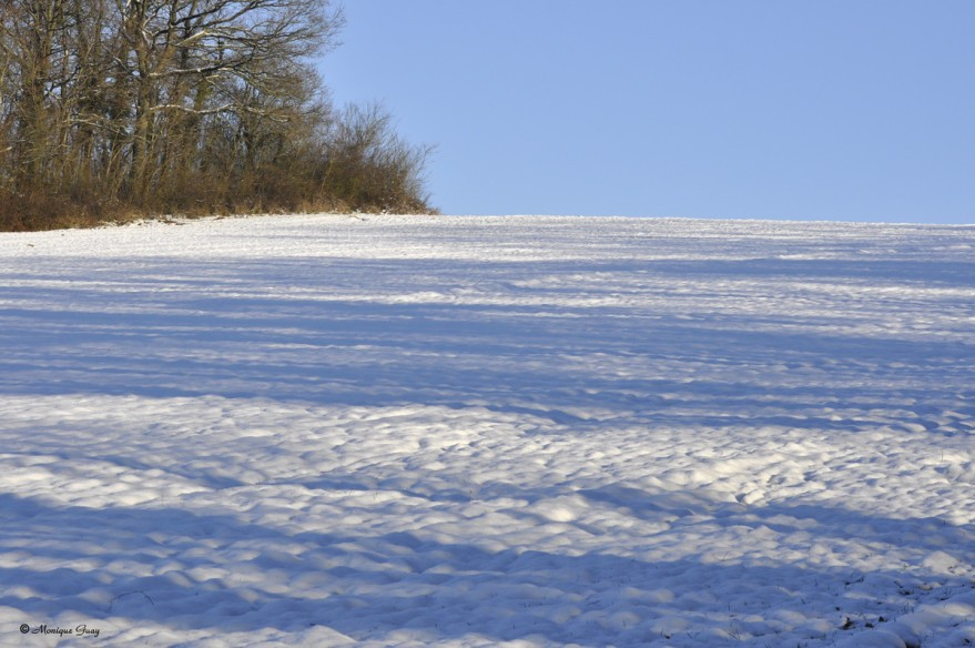 champs-neige-2739.jpg