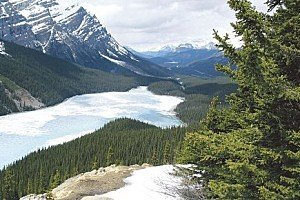 159477-lac-peyto-parc-national-banff