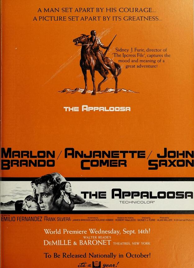 THE APPALOOSA BOX OFFICE USA 1966