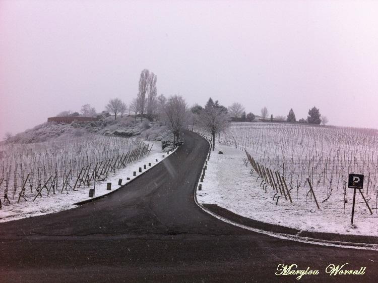 Sigolsheim : La nécropole
