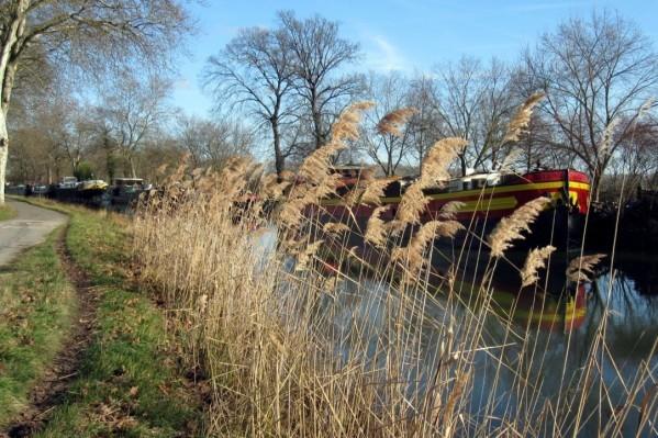 T2 - Bord du canal