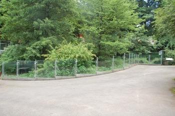 Zoo Neunkirchen 2012 142
