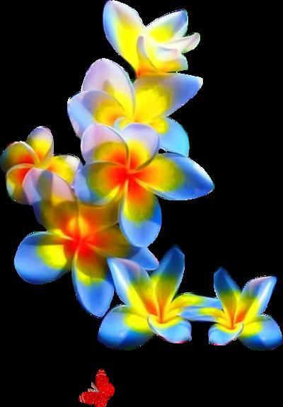 Coins fleuris