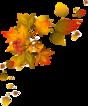 """Résultat de recherche d'images pour """"fall frise feuilles"""""""