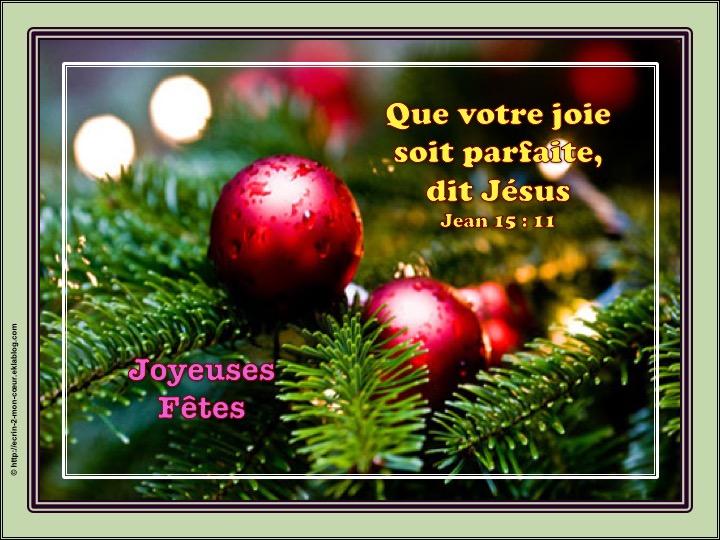 Joyeux Noël / Joyeuses Fêtes - Jean 15 : 11