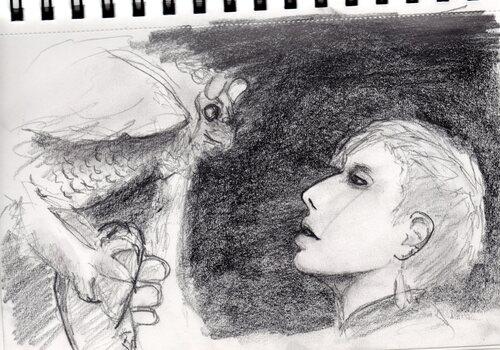 la fille au hibou