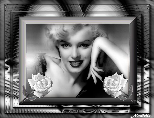 fond noir et blanc Le Bourdon