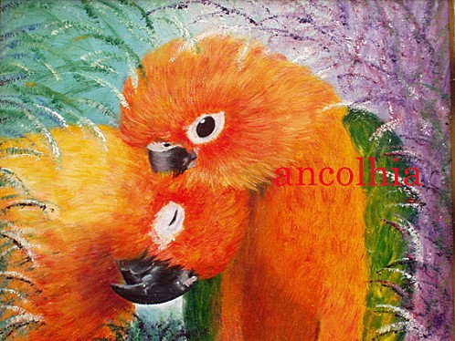perroquets copie