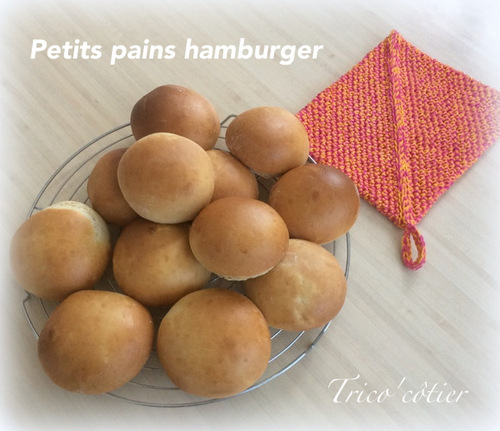 Petits pains hamburger