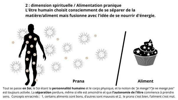 Alimentation pranique et transmutation de la matière