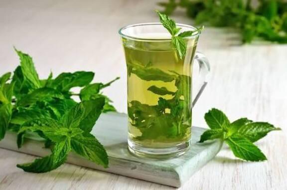 Découvrez les multiples propriétés du thé à la menthe pour la santé