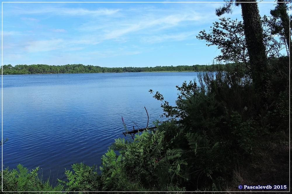 Nouvelle balade au lac du Bousquey - Juillet 2015 - 2/7